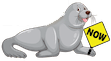 Seal-Now-Logo-Transparent