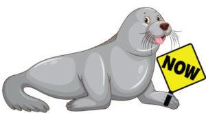 Seal-Seal-Now-Logo