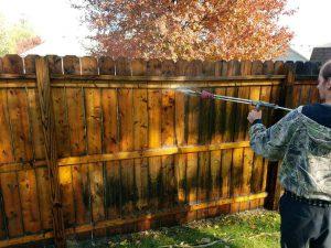 Spraying-a-fence